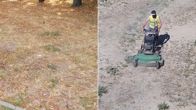 Miasto wstrzymało koszenie traw, ale niektórzy wciąż koszą suche trawniki