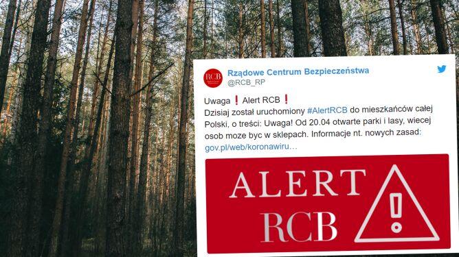 RCB przypomina o otwarciu lasów i parków. Jak być bezpiecznym w lesie