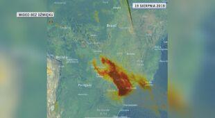 Aerozole nad Brazylią (dane z Copernicus, przetworzone przez KNMI)