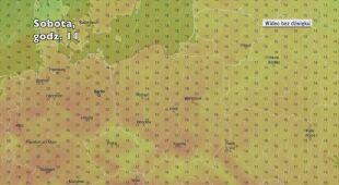 Prognozowana temperatura w następnych dniach