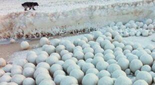 Na syberyjskim wybrzeżu pojawiły się lodowe kule